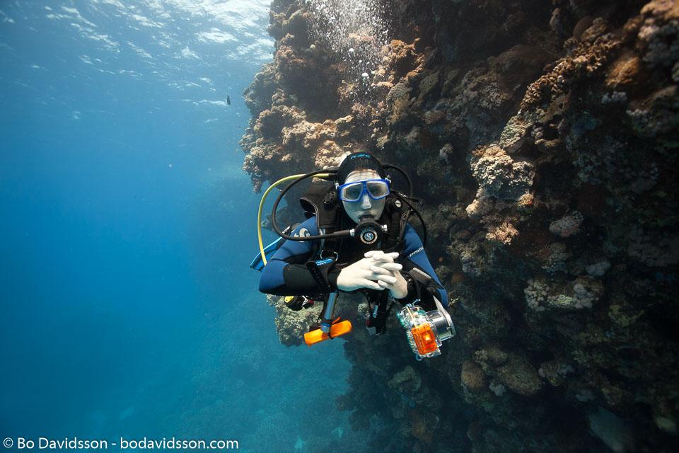 BD-100924-Fury-Shoal-2348-Homo-sapiens.-Linnaeus.-1758-[Diver].jpg